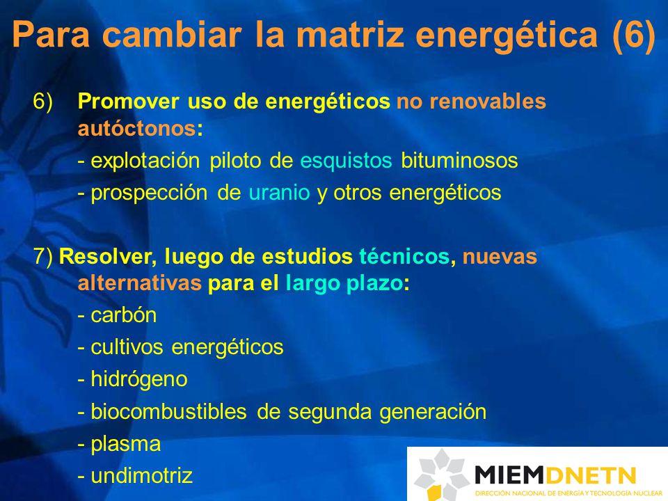 Para cambiar la matriz energética (6) 6) Promover uso de energéticos no renovables autóctonos: - explotación piloto de esquistos bituminosos - prospección de uranio y otros energéticos 7) Resolver, luego de estudios técnicos, nuevas alternativas para el largo plazo: - carbón - cultivos energéticos - hidrógeno - biocombustibles de segunda generación - plasma - undimotriz
