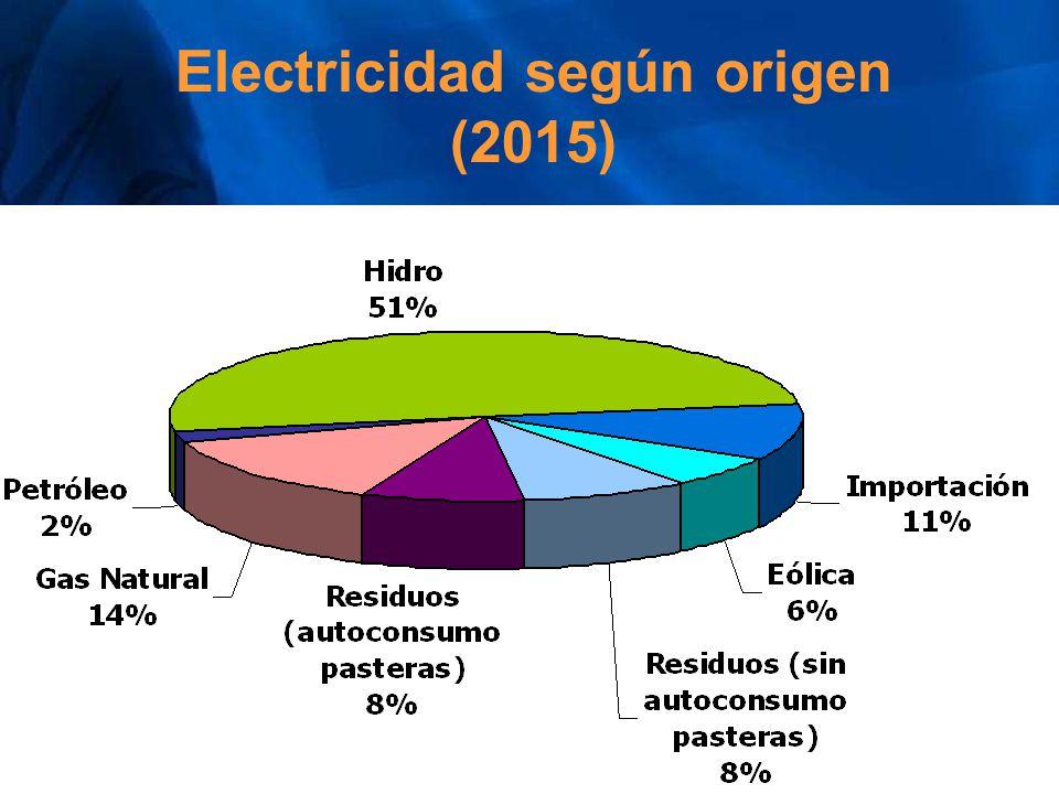 Electricidad según origen (2015)