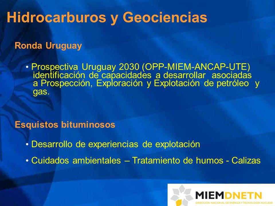 Hidrocarburos y Geociencias Ronda Uruguay Prospectiva Uruguay 2030 (OPP-MIEM-ANCAP-UTE) identificación de capacidades a desarrollar asociadas a Prospección, Exploración y Explotación de petróleo y gas.