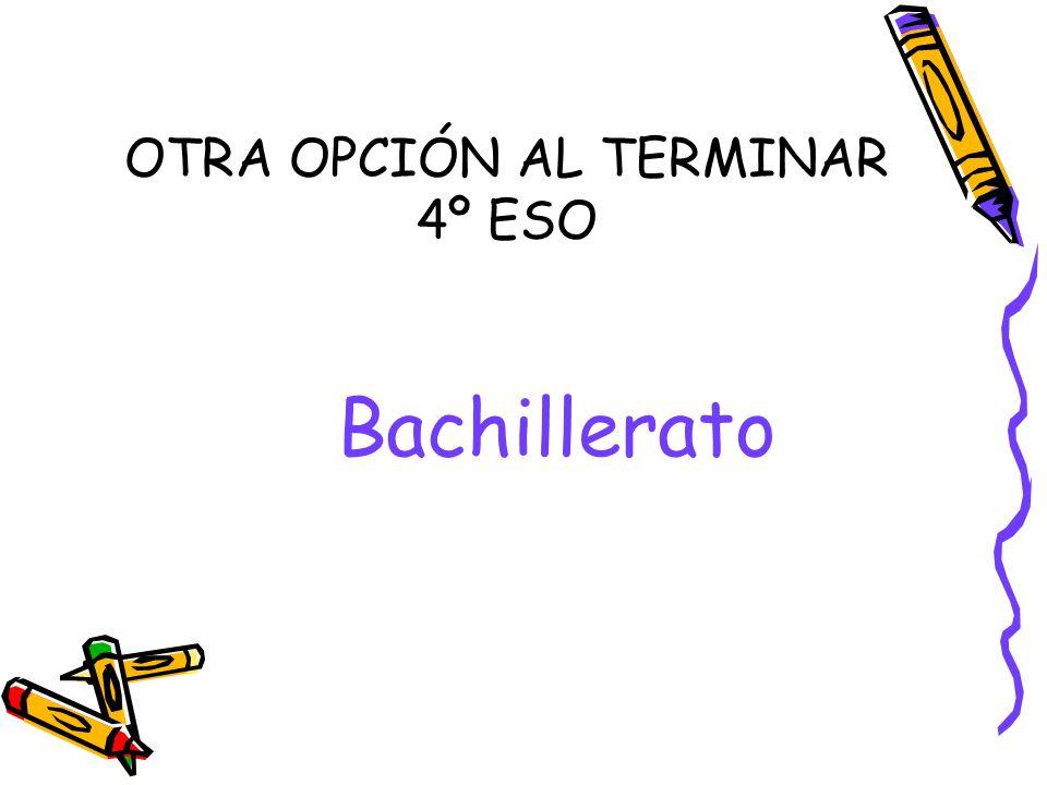 OTRA OPCIÓN AL TERMINAR 4º ESO Bachillerato