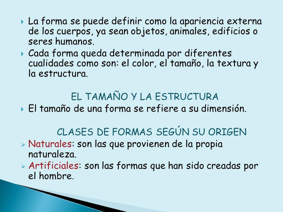 CLASES DE FORMAS SEGÚN SU ESTRUCTURA Orgánicas: son las que tienen un perfil y una superficie interior irregulares.