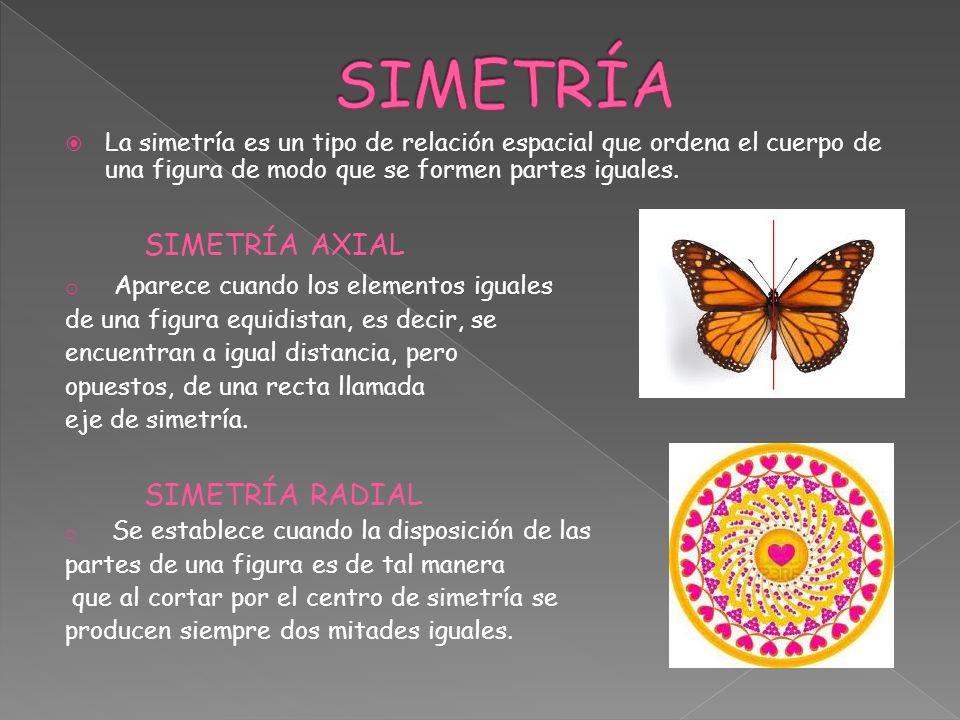 La simetría es un tipo de relación espacial que ordena el cuerpo de una figura de modo que se formen partes iguales. SIMETRÍA AXIAL o Aparece cuando l