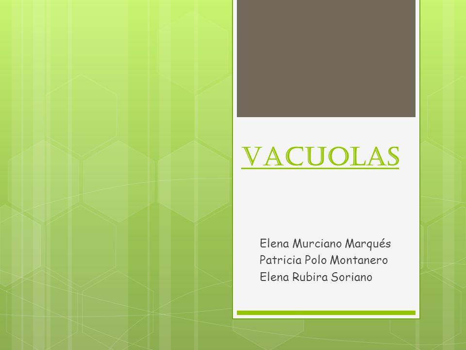 Vacuolas Elena Murciano Marqués Patricia Polo Montanero Elena Rubira Soriano