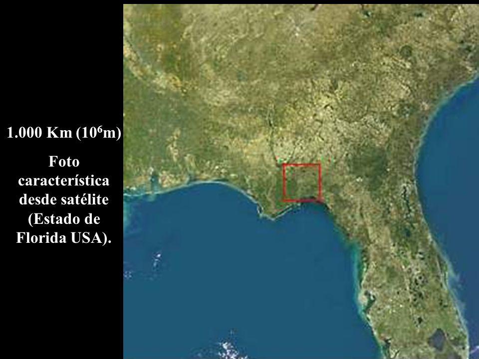 1.000 Km (10 6 m) Foto característica desde satélite (Estado de Florida USA).