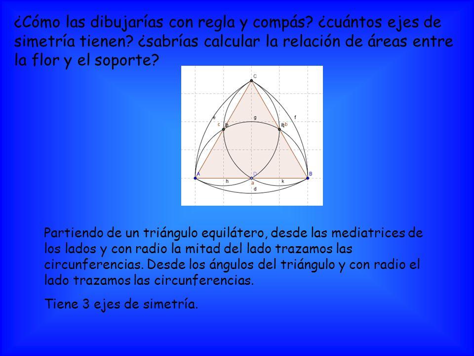 ¿Cómo las dibujarías con regla y compás? ¿cuántos ejes de simetría tienen? ¿sabrías calcular la relación de áreas entre la flor y el soporte? Partiend