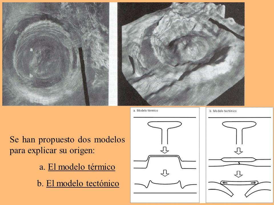 Se han propuesto dos modelos para explicar su origen: a. El modelo térmico b. El modelo tectónico
