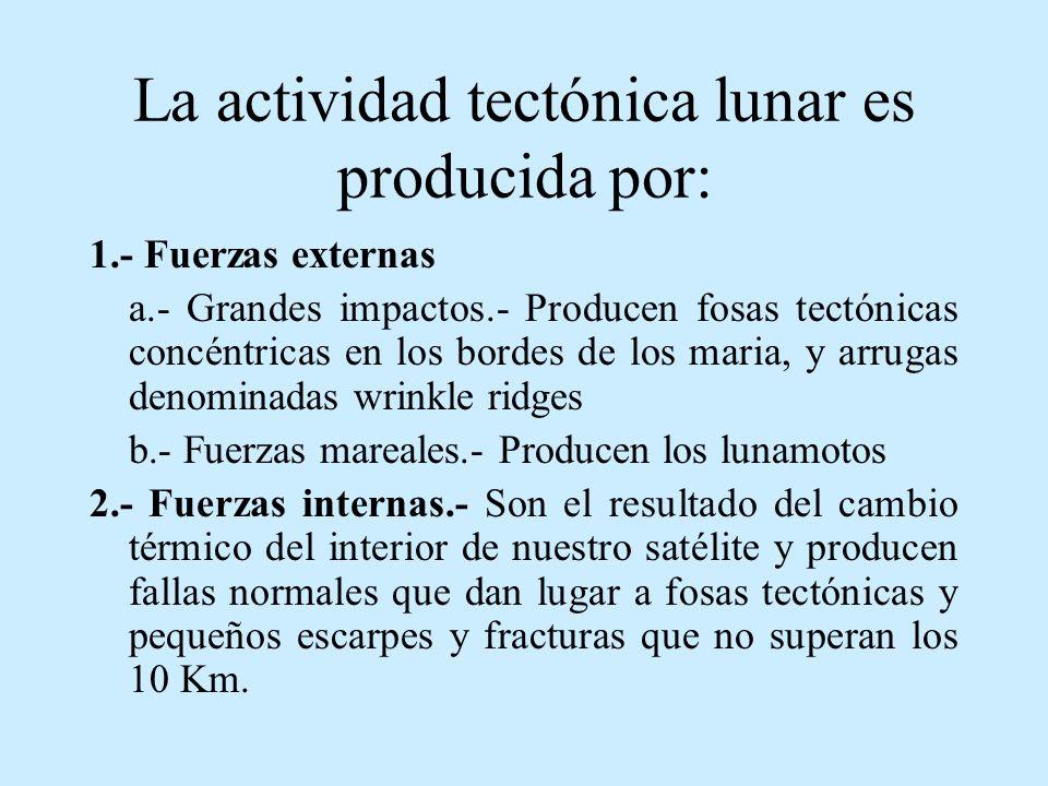 La actividad tectónica lunar es producida por: 1.- Fuerzas externas a.- Grandes impactos.- Producen fosas tectónicas concéntricas en los bordes de los