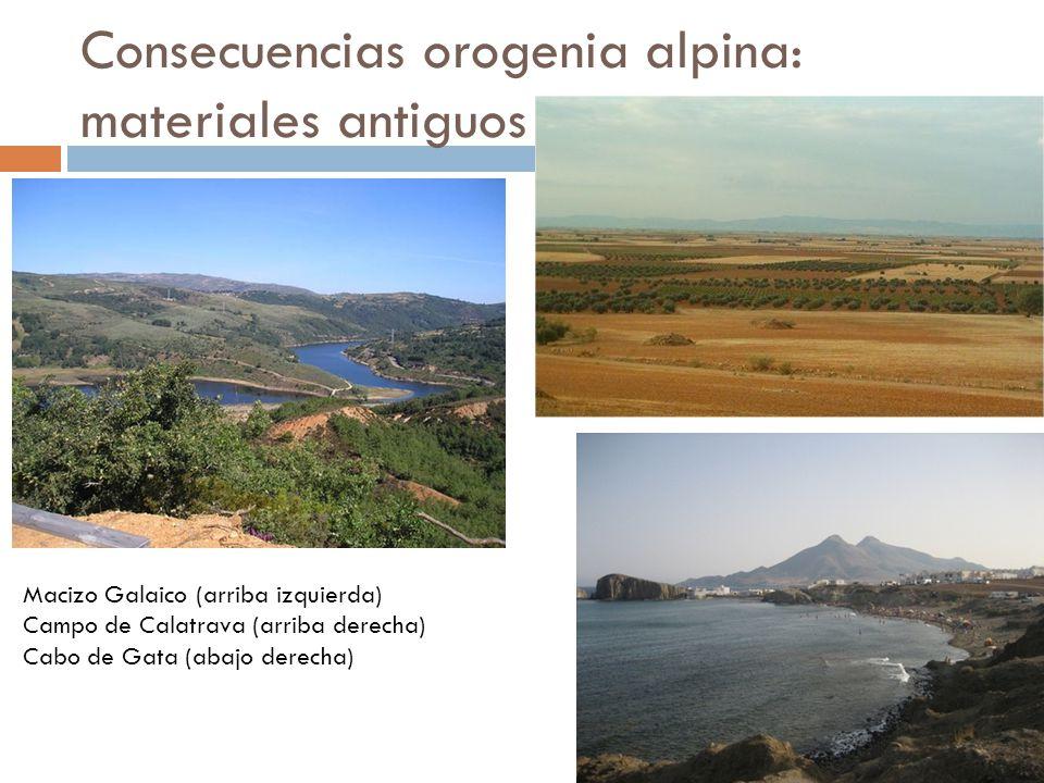 Consecuencias orogenia alpina: cordilleras alpinas Cordillera cantábrica Anticlinal