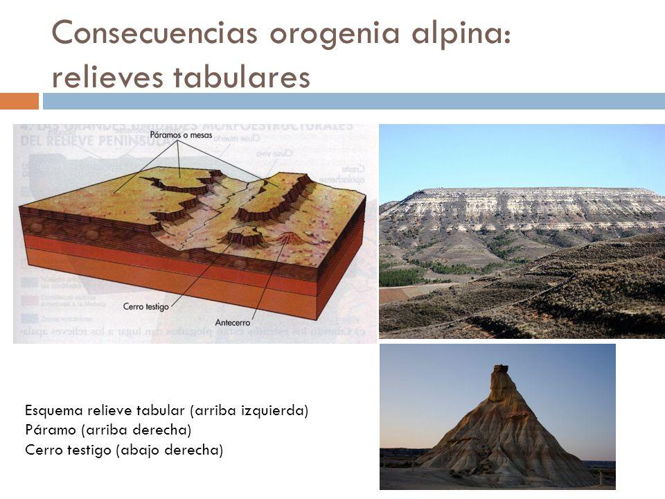 Consecuencias orogenia alpina: depresiones Depresión del Ebro Depresión del Guadalquivir