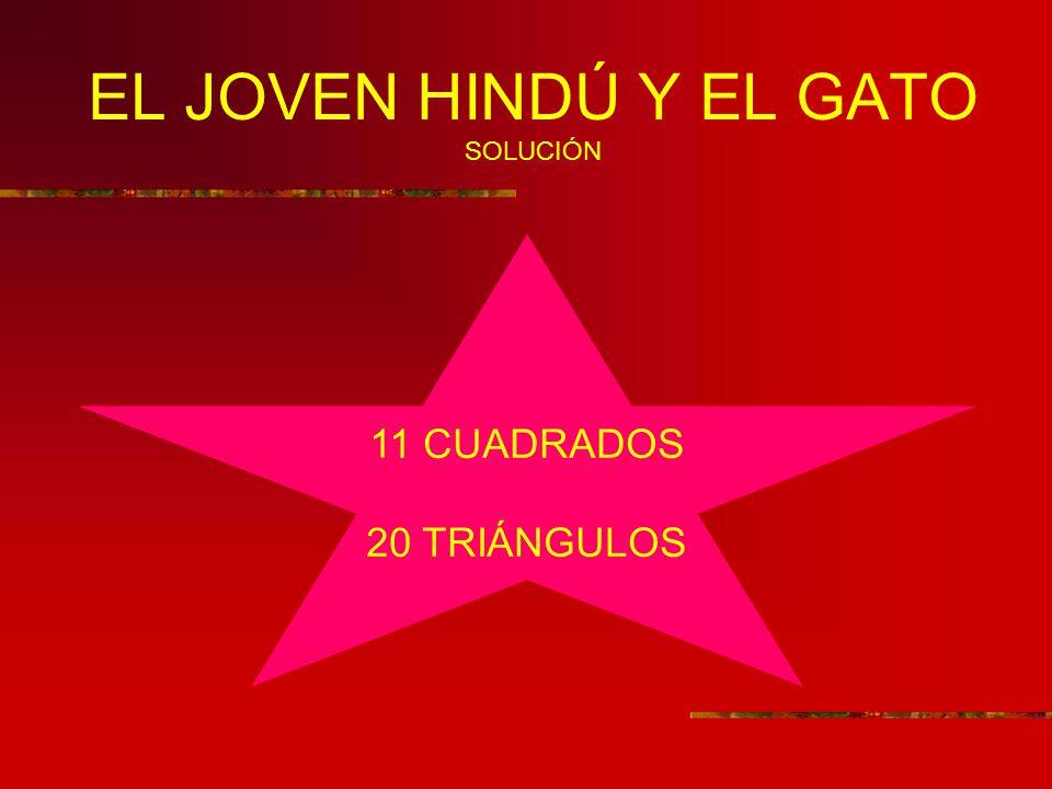 EL JOVEN HINDÚ Y EL GATO SOLUCIÓN 11 CUADRADOS 20 TRIÁNGULOS