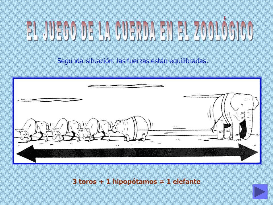 Segunda situación: las fuerzas están equilibradas. 3 toros + 1 hipopótamos = 1 elefante