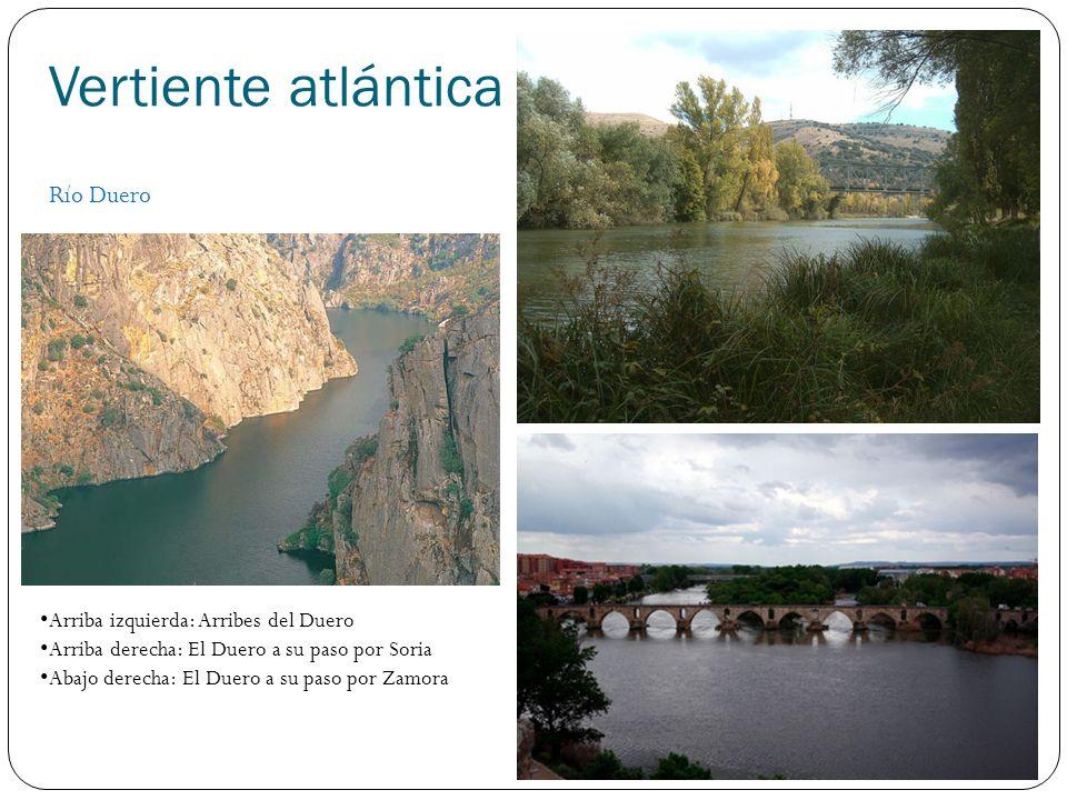 Vertiente atlántica Río Tajo Arriba izquierda: Puente de Alcántara Arriba derecha: El Tajo en Monfragüe Abajo derecha: Estuario del Tajo en Lisboa