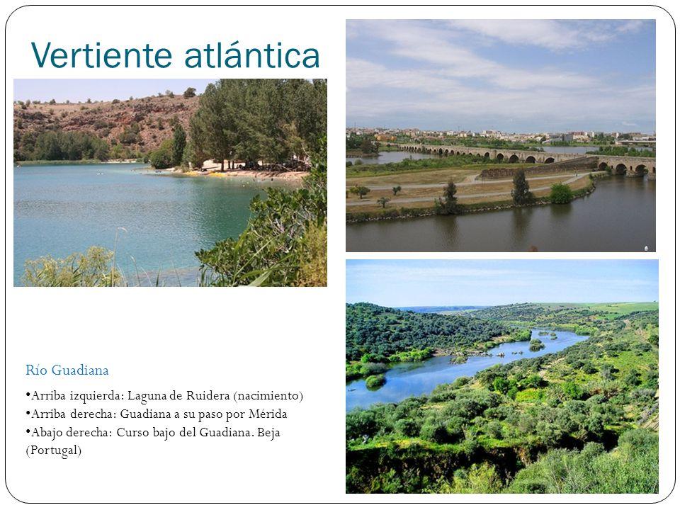Vertiente atlántica Río Guadalquivir Arriba izquierda: Nacimiento Guadalquivir (Sierra de Cazorla) Arriba derecha: Guadalquivir a su paso por Córdoba Abajo derecha: Desembocadura del Guadalquiriv, parque de Doñana