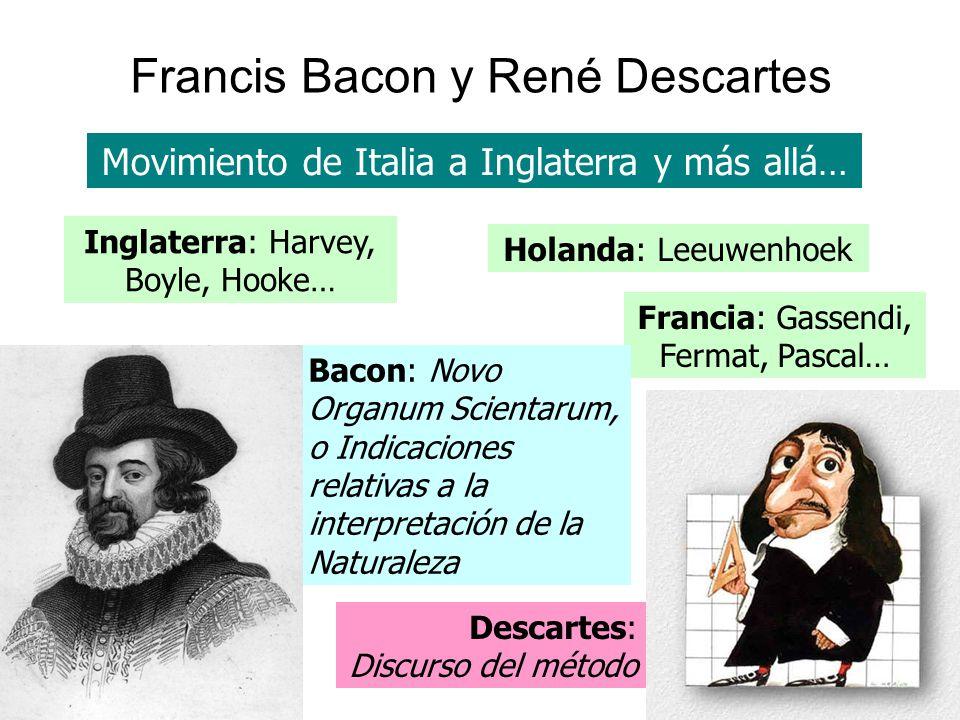 Francis Bacon y René Descartes Movimiento de Italia a Inglaterra y más allá… Descartes: Discurso del método Inglaterra: Harvey, Boyle, Hooke… Holanda:
