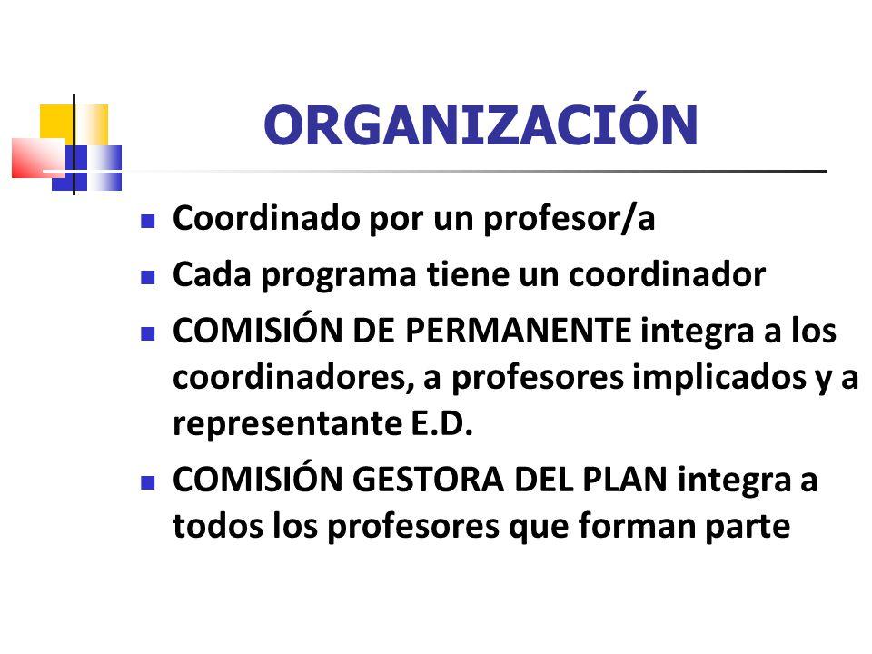 ORGANIZACIÓN Coordinado por un profesor/a Cada programa tiene un coordinador COMISIÓN DE PERMANENTE integra a los coordinadores, a profesores implicados y a representante E.D.