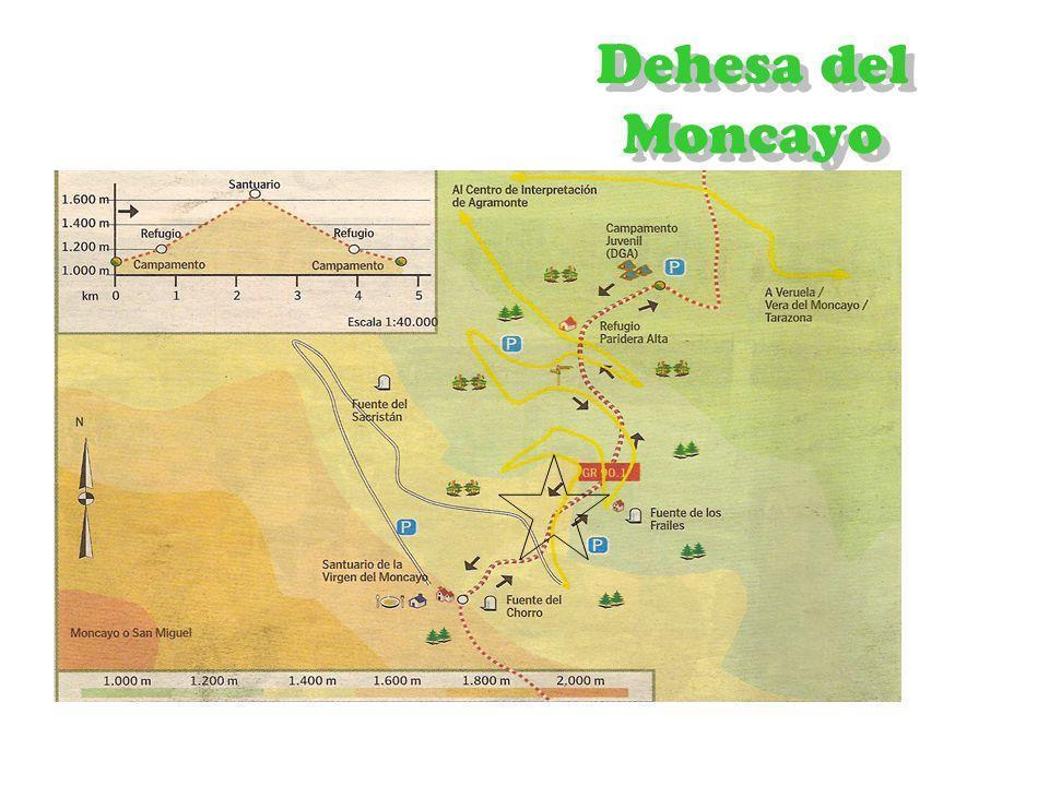 Dehesa del Moncayo 1 2 3
