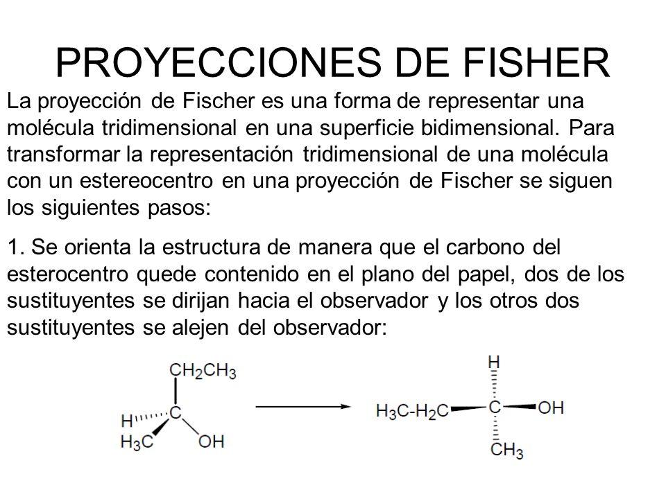 PROYECCIONES DE FISHER La proyección de Fischer es una forma de representar una molécula tridimensional en una superficie bidimensional. Para transfor