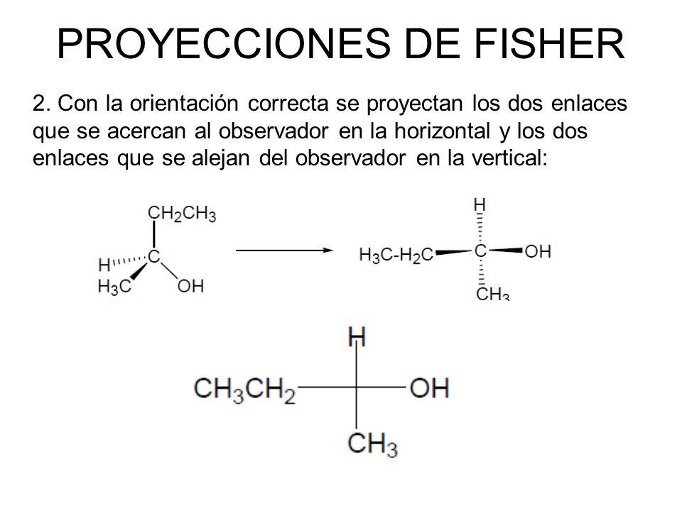 PROYECCIONES DE FISHER 2. Con la orientación correcta se proyectan los dos enlaces que se acercan al observador en la horizontal y los dos enlaces que