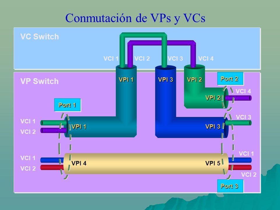 Conmutación de VPs y VCs VCI 1VCI 2VCI 3VCI 4 VPI 2 VPI 3 VPI 1 VPI 2 VPI 3 VPI 5 VPI 1 VPI 4 Port 1 Port 2 Port 3 VCI 1 VCI 2 VCI 1 VCI 2 VP Switch VC Switch VCI 1 VCI 2 VCI 4 VCI 3