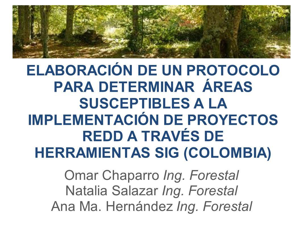 ELABORACIÓN DE UN PROTOCOLO PARA DETERMINAR ÁREAS SUSCEPTIBLES A LA IMPLEMENTACIÓN DE PROYECTOS REDD A TRAVÉS DE HERRAMIENTAS SIG (COLOMBIA) Omar Chaparro Ing.