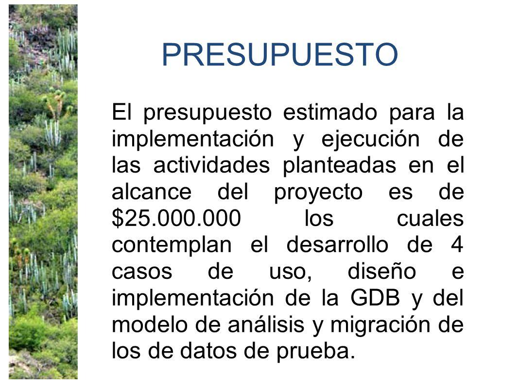 PRESUPUESTO El presupuesto estimado para la implementación y ejecución de las actividades planteadas en el alcance del proyecto es de $25.000.000 los cuales contemplan el desarrollo de 4 casos de uso, diseño e implementación de la GDB y del modelo de análisis y migración de los de datos de prueba.