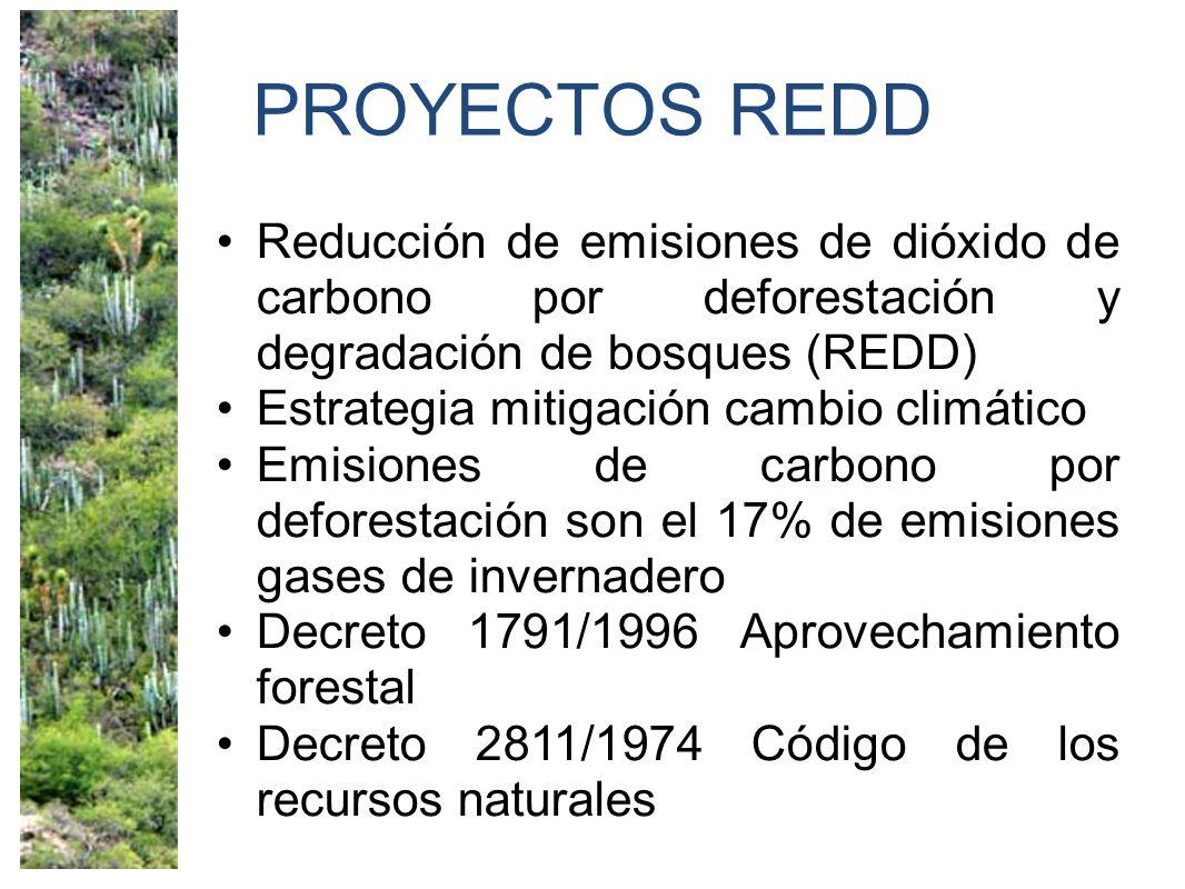 PROYECTOS REDD Reducción de emisiones de dióxido de carbono por deforestación y degradación de bosques (REDD) Estrategia mitigación cambio climático Emisiones de carbono por deforestación son el 17% de emisiones gases de invernadero Decreto 1791/1996 Aprovechamiento forestal Decreto 2811/1974 Código de los recursos naturales