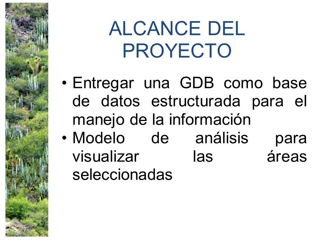 ALCANCE DEL PROYECTO Entregar una GDB como base de datos estructurada para el manejo de la información Modelo de análisis para visualizar las áreas seleccionadas