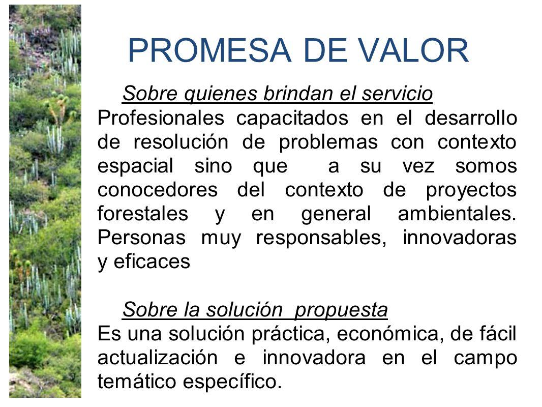 PROMESA DE VALOR Sobre quienes brindan el servicio Profesionales capacitados en el desarrollo de resolución de problemas con contexto espacial sino que a su vez somos conocedores del contexto de proyectos forestales y en general ambientales.