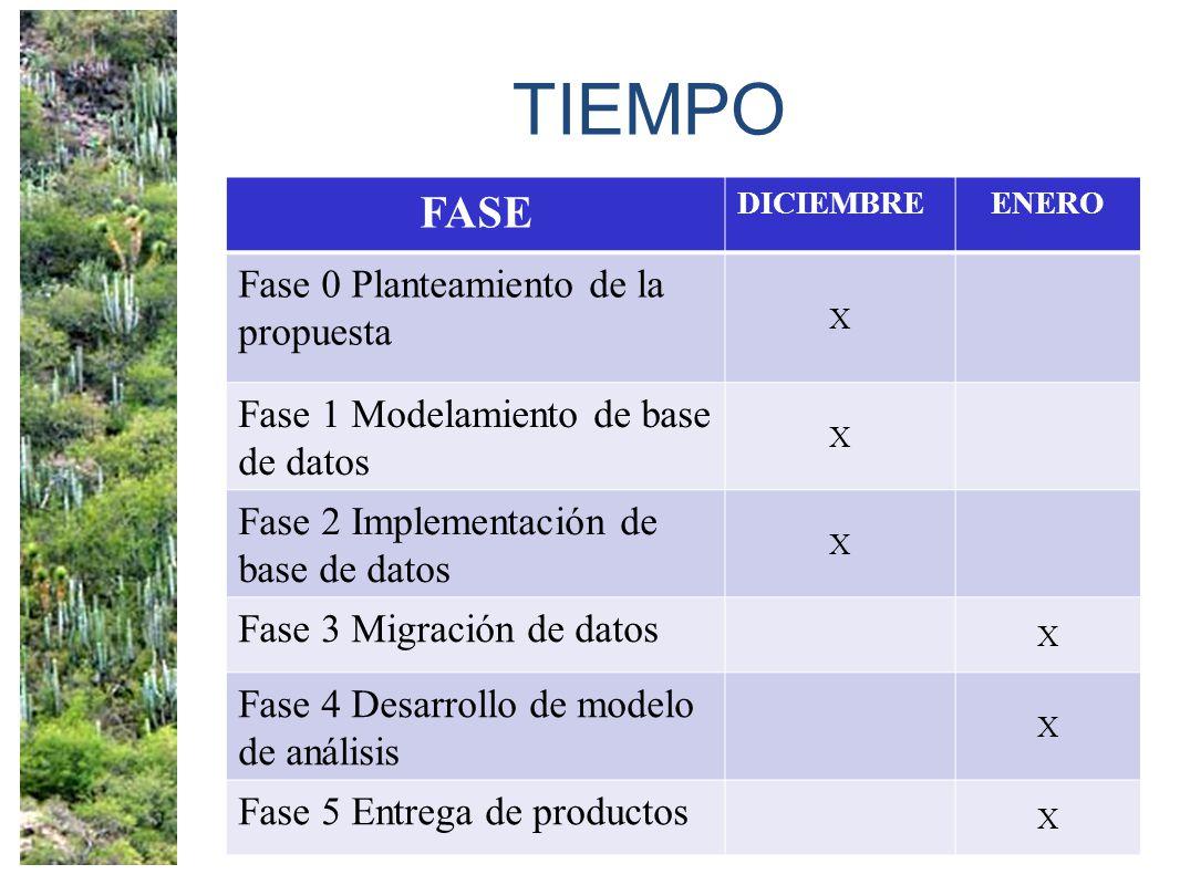 TIEMPO FASE DICIEMBREENERO Fase 0 Planteamiento de la propuesta X Fase 1 Modelamiento de base de datos X Fase 2 Implementación de base de datos X Fase 3 Migración de datos X Fase 4 Desarrollo de modelo de análisis X Fase 5 Entrega de productos X
