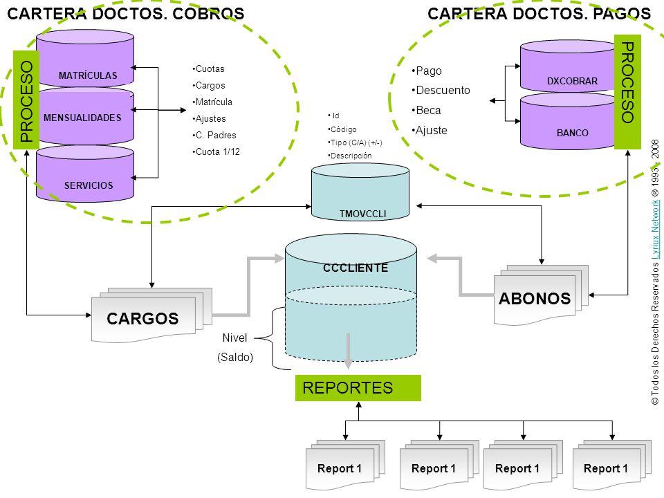 © Todos los Derechos Reservados Lyriux Network ® 1993 - 2008Lyriux Network CCCLIENTE CARGOS ABONOS Nivel (Saldo) Cuotas Cargos Matrícula Ajustes C. Pa