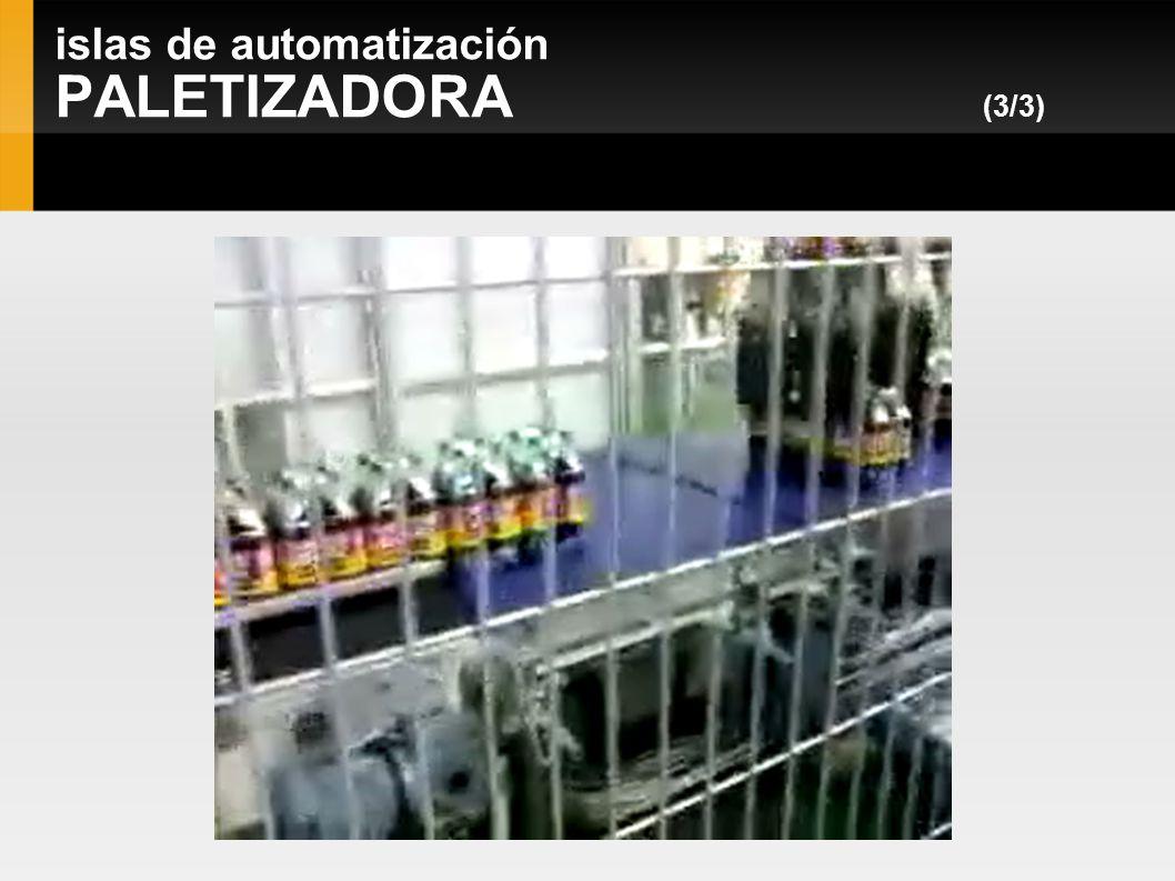 islas de automatización PALETIZADORA (3/3)