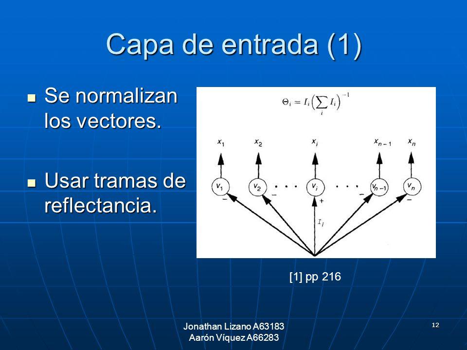 12 Capa de entrada (1) Se normalizan los vectores. Se normalizan los vectores. Usar tramas de reflectancia. Usar tramas de reflectancia. Jonathan Liza