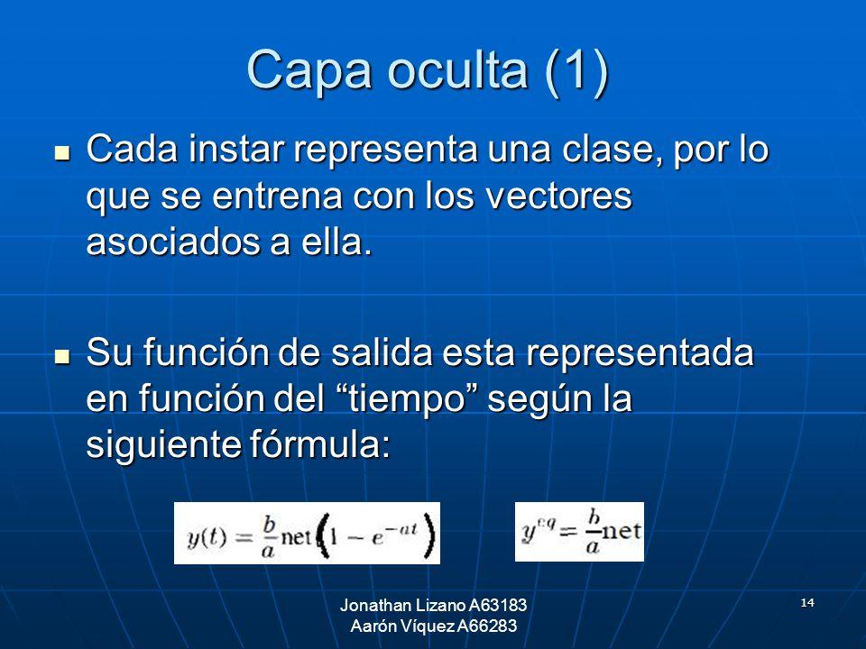 14 Capa oculta (1) Cada instar representa una clase, por lo que se entrena con los vectores asociados a ella. Cada instar representa una clase, por lo