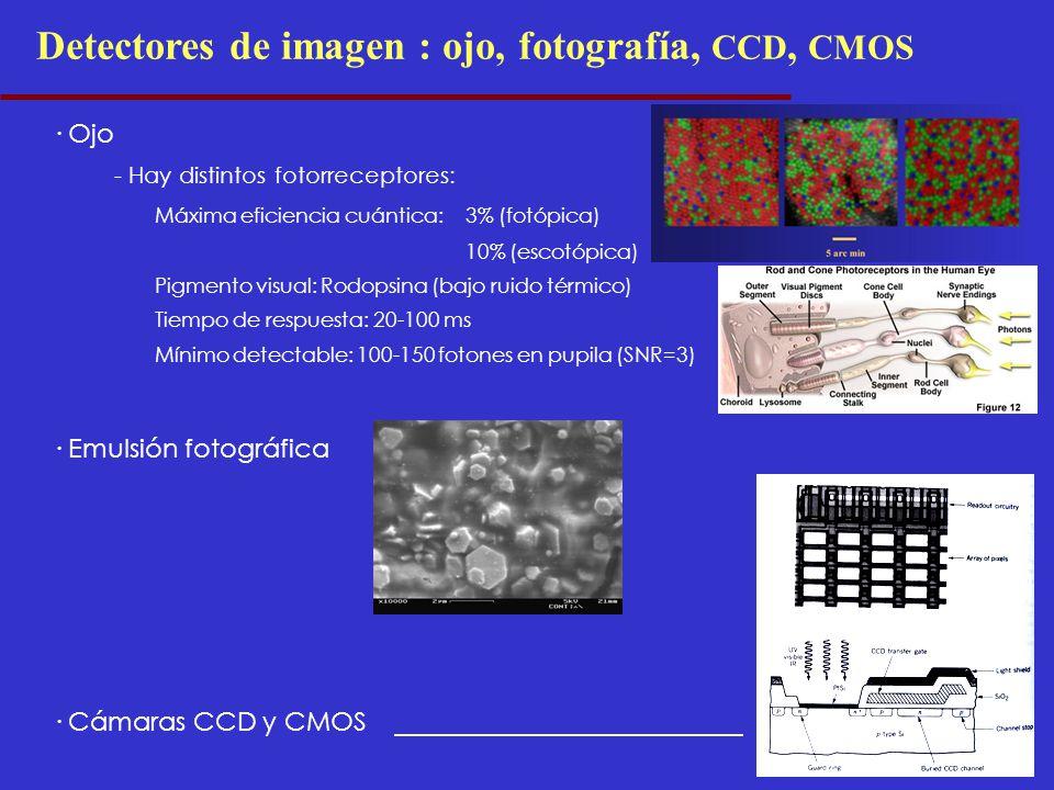Detectores de imagen : ojo, fotografía, CCD, CMOS · Ojo - Hay distintos fotorreceptores: Máxima eficiencia cuántica:3% (fotópica) 10% (escotópica) Pigmento visual: Rodopsina (bajo ruido térmico) Tiempo de respuesta: 20-100 ms Mínimo detectable: 100-150 fotones en pupila (SNR=3) · Emulsión fotográfica · Cámaras CCD y CMOS