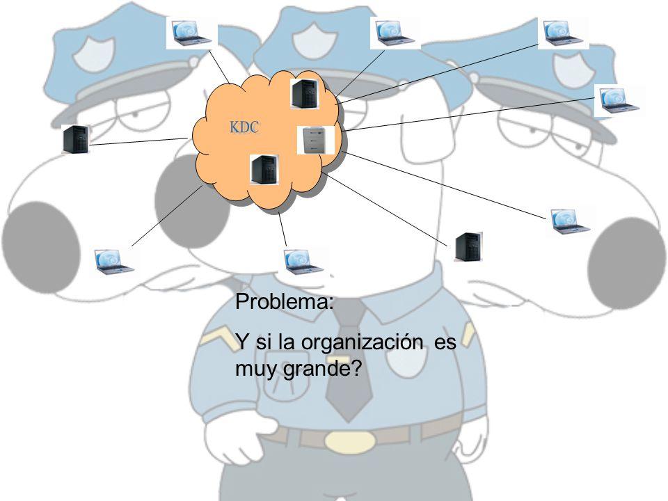 Problema: Y si la organización es muy grande?