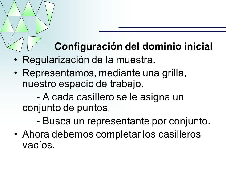 Configuración del dominio inicial Regularización de la muestra. Representamos, mediante una grilla, nuestro espacio de trabajo. - A cada casillero se