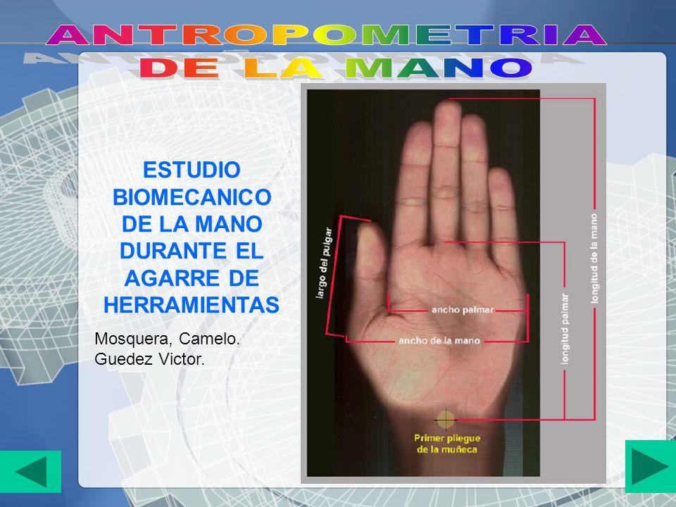 ESTUDIO BIOMECANICO DE LA MANO DURANTE EL AGARRE DE HERRAMIENTAS Mosquera, Camelo. Guedez Victor.