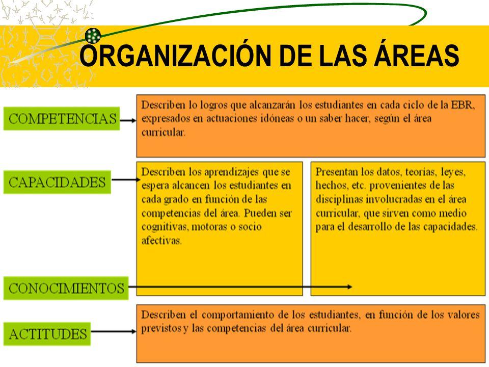 ORGANIZACIÓN DEL ÁREA: Las Áreas están organizadas mediante: competencias, Capacidades, Conocimientos y actitudes.