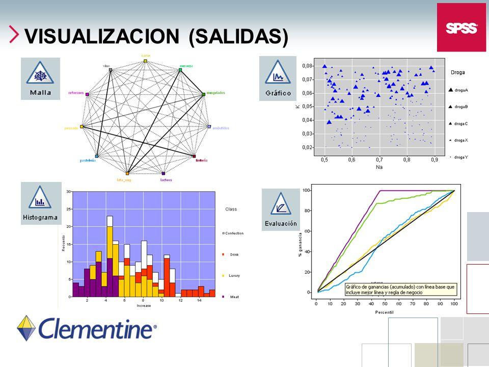 VISUALIZACION (SALIDAS)