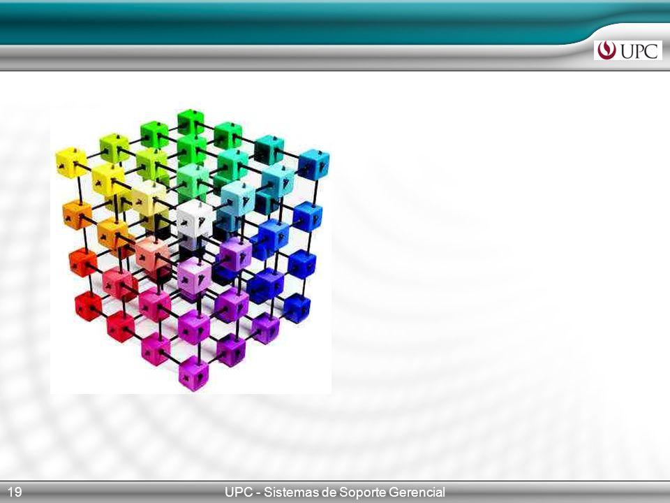 UPC - Sistemas de Soporte Gerencial19