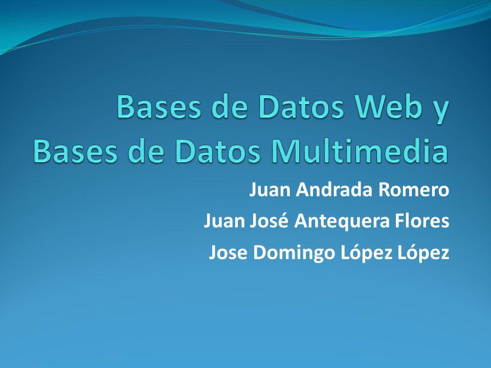 Bases de Datos Multimedia Tipos de datos multimedia Texto: estructurado o no estructurado, hipermedia.