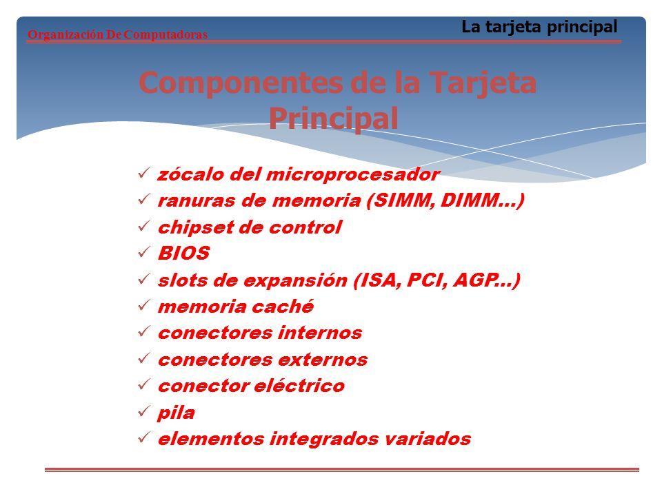 zócalo del microprocesador ranuras de memoria (SIMM, DIMM...) chipset de control BIOS slots de expansión (ISA, PCI, AGP...) memoria caché conectores i