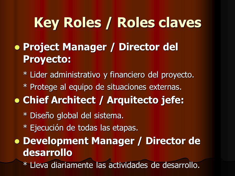 Key Roles / Roles claves Project Manager / Director del Proyecto: Project Manager / Director del Proyecto: * Lider administrativo y financiero del proyecto.