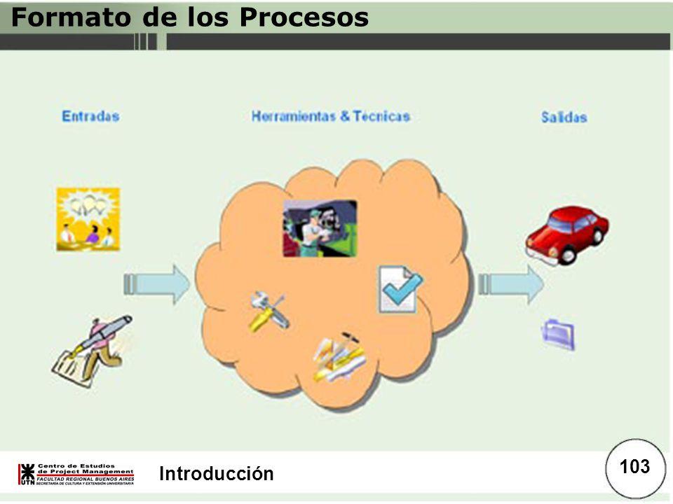 Introducción Formato de los Procesos 103