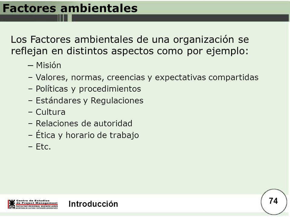 Introducción Factores ambientales Los Factores ambientales de una organización se reflejan en distintos aspectos como por ejemplo: – Misión – Valores,
