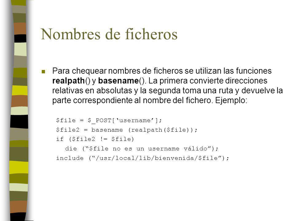 Nombres de ficheros n Para chequear nombres de ficheros se utilizan las funciones realpath() y basename(). La primera convierte direcciones relativas