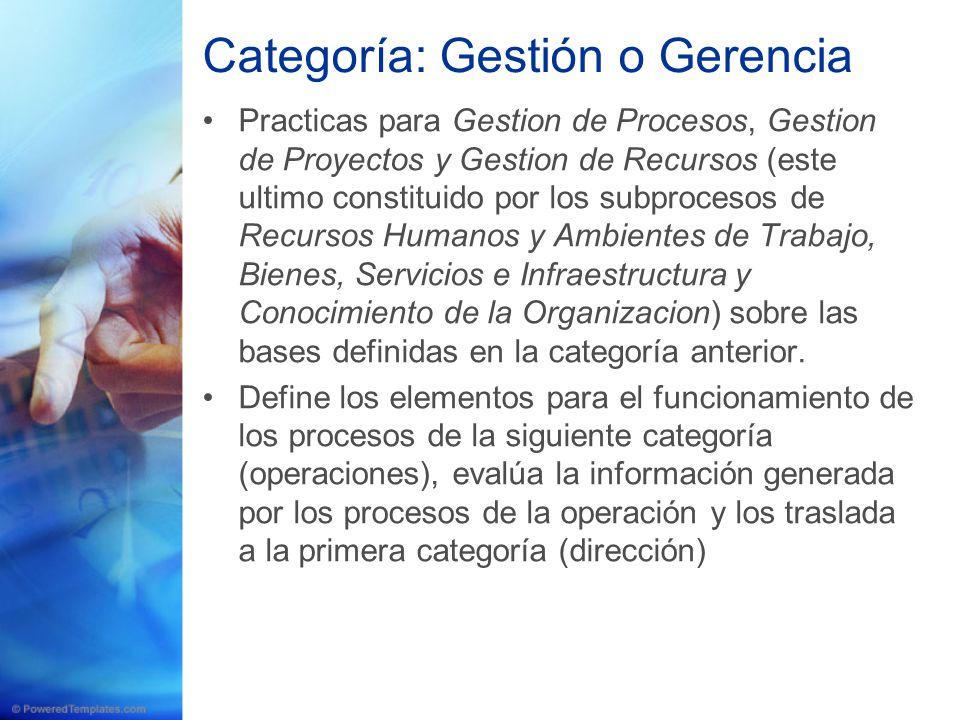 Categoría: Gestión o Gerencia Practicas para Gestion de Procesos, Gestion de Proyectos y Gestion de Recursos (este ultimo constituido por los subproce
