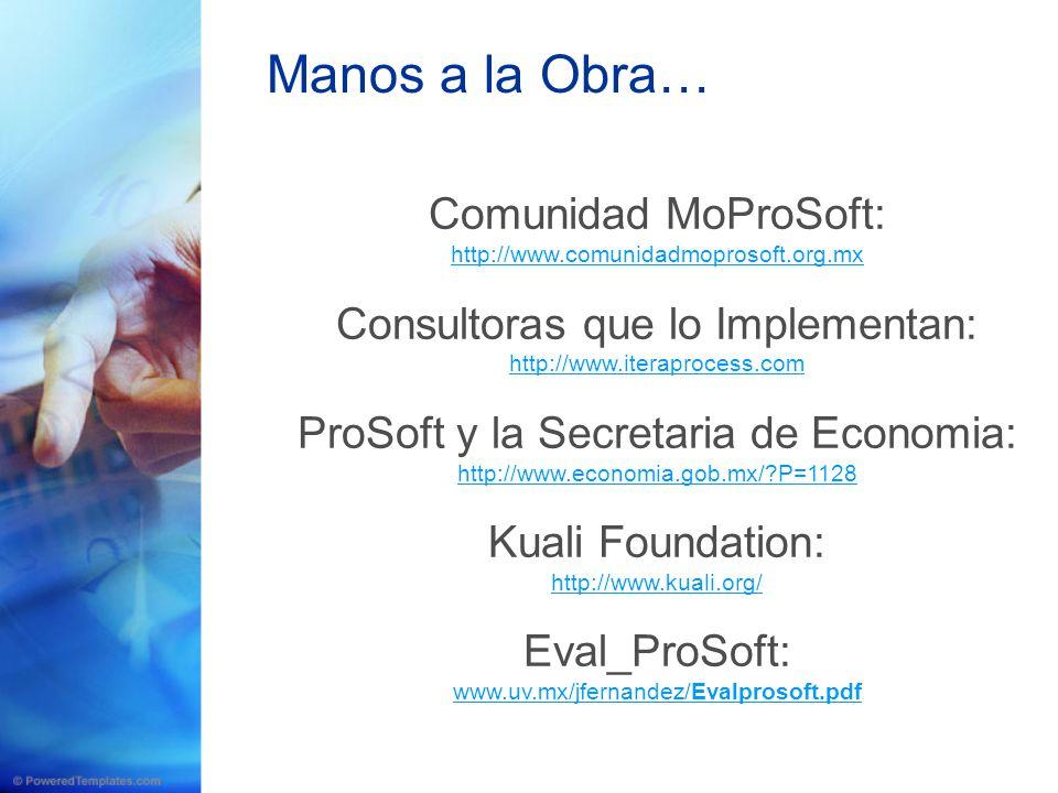Comunidad MoProSoft: http://www.comunidadmoprosoft.org.mx Consultoras que lo Implementan: http://www.iteraprocess.com ProSoft y la Secretaria de Econo