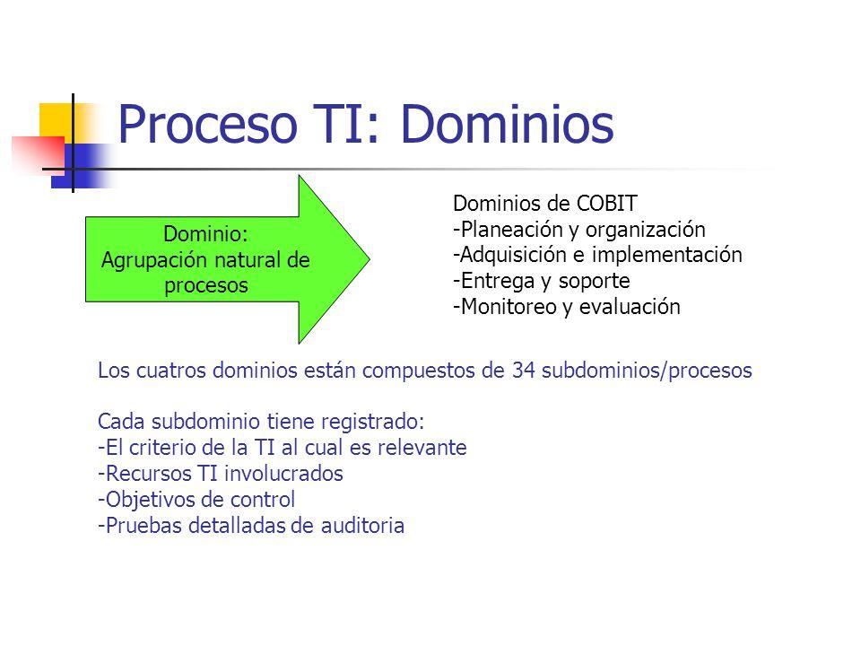 Proceso TI: Dominios Dominios de COBIT -Planeación y organización -Adquisición e implementación -Entrega y soporte -Monitoreo y evaluación Dominio: Ag