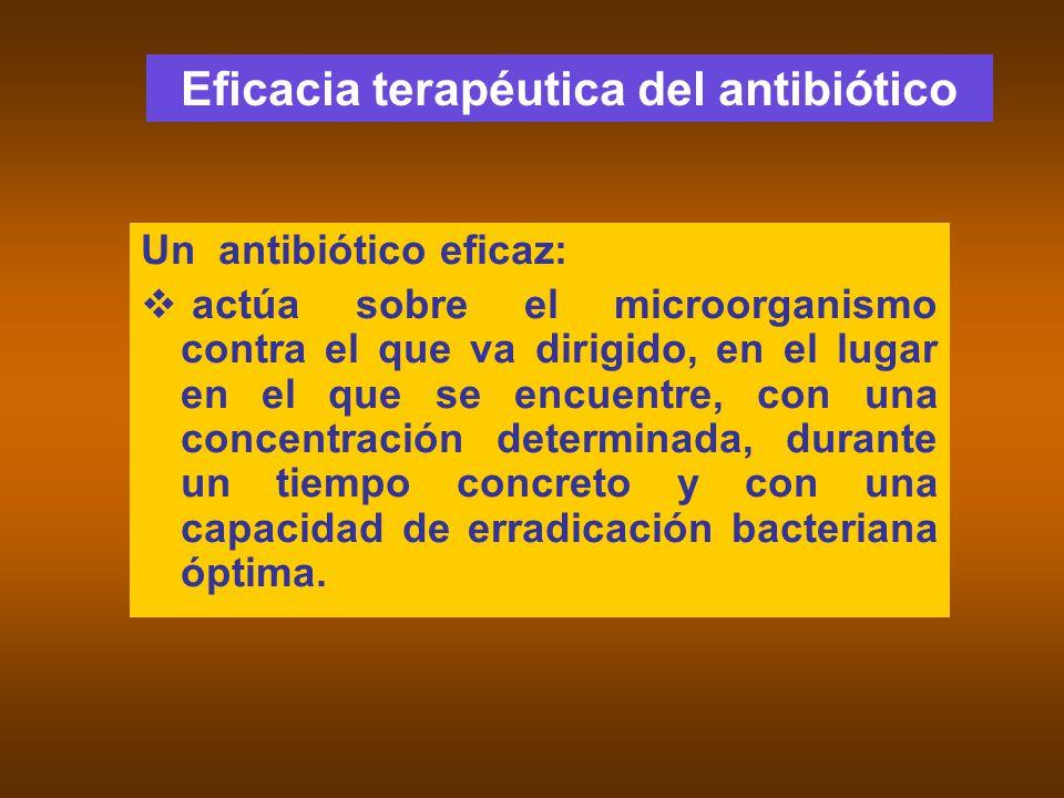 Un antibiótico eficaz: actúa sobre el microorganismo contra el que va dirigido, en el lugar en el que se encuentre, con una concentración determinada,